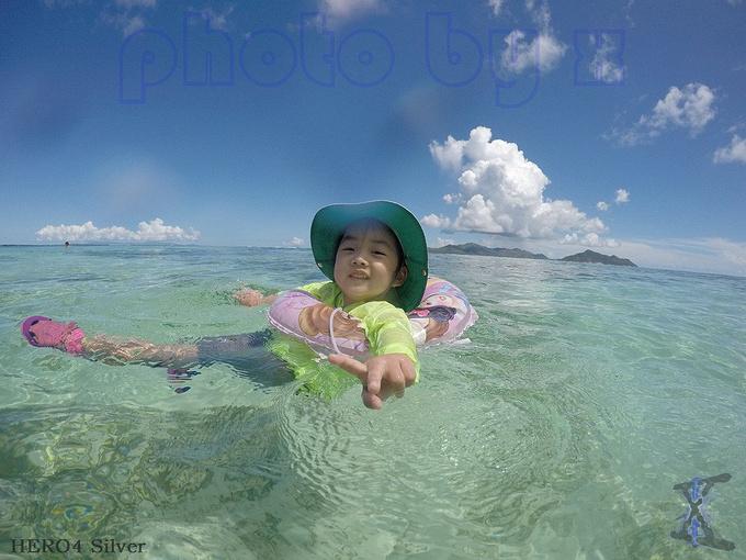 beach图片