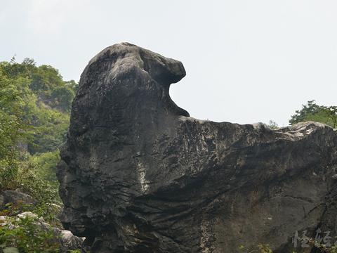 玉石林风景区旅游景点图片