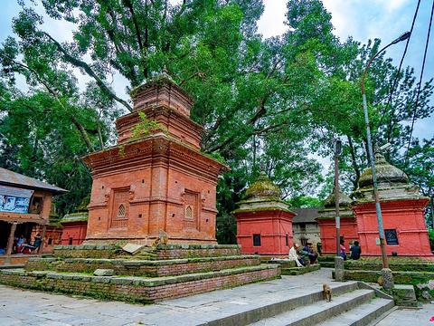 帕斯帕提纳寺旅游景点图片