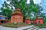 帕斯帕提纳寺