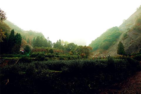 大龙湫旅游景点攻略图