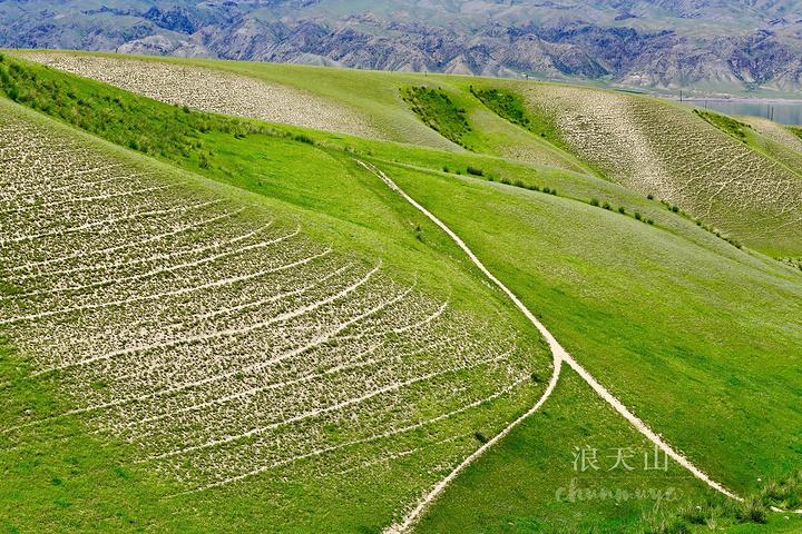 """""""路边的风景虽不错,但也只草草拍几张了事。这兩个点本不在我的计划路线里,但是道路状况糟糕_恰西森林公园""""的评论图片"""