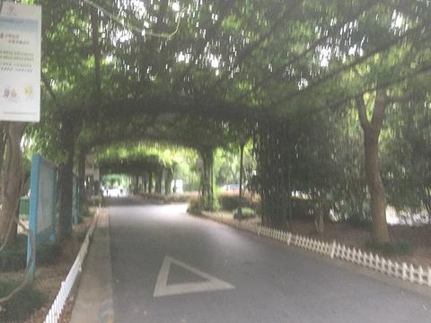 渤公岛生态公园旅游景点攻略图