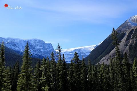 冰原大道旅游景点攻略图
