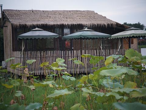 明月村旅游景点图片