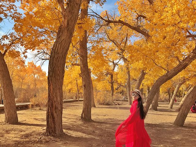 8漫步在浓郁的胡杨林中仿佛进入神话般的仙境 这三千年的守候,换