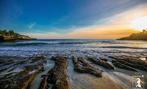 梦幻沙滩的图片