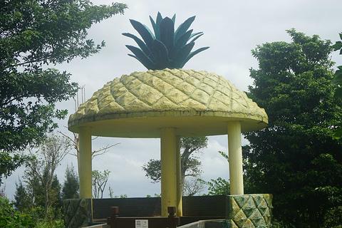 菠萝的海旅游景点攻略图