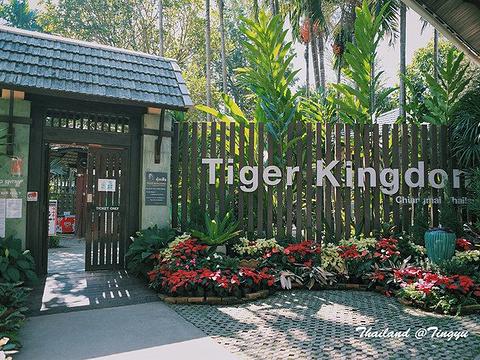 老虎园旅游景点图片