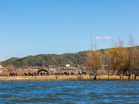 拉市海茶马古道旅游景点图片