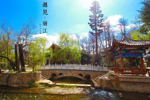 束河古镇的图片
