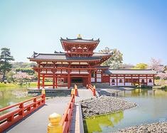 【肉球滚世界】平安京之樱花物语,许下我与你的约定
