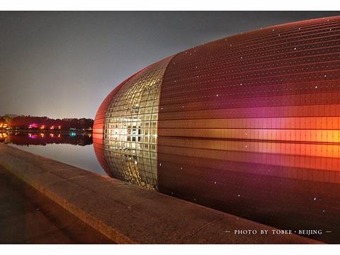 中国国家大剧院旅游景点图片
