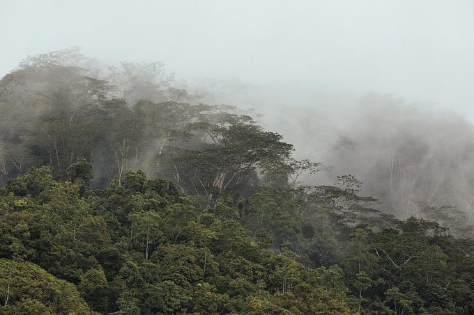 伊甸园岛图片