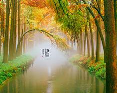 【重游泰州】慢游养生境,寻觅尘世幸福