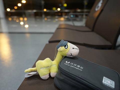 菲乌米奇诺机场旅游景点图片