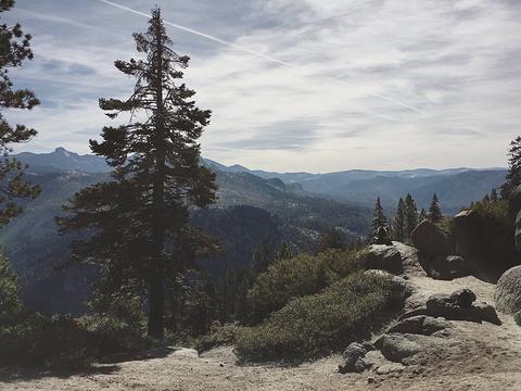 优胜美地国家公园旅游景点攻略图