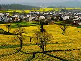 歙县旅游景点攻略图片