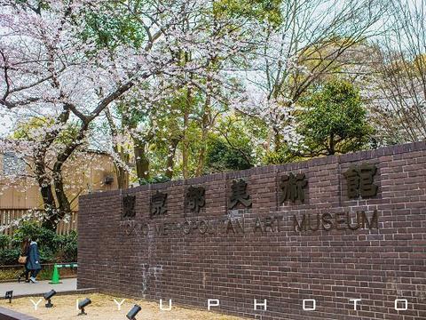 东京都美术馆旅游景点图片