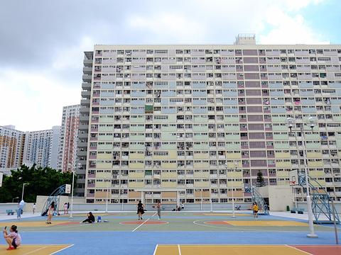 彩虹邨旅游景点图片