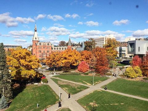 康奈尔大学旅游景点攻略图