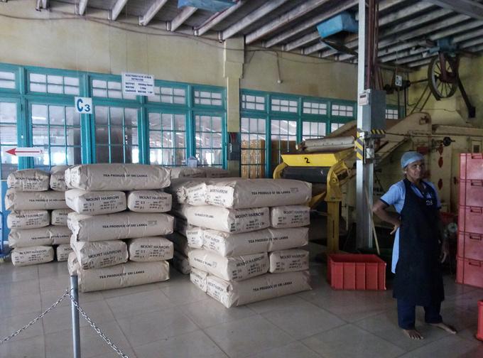 蓝房子茶厂图片