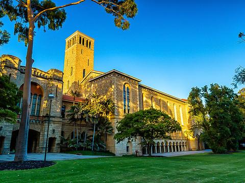 The University of Western Australia旅游景点图片