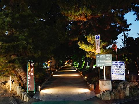三保之松原旅游景点图片