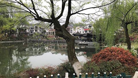 青芝坞旅游景点攻略图