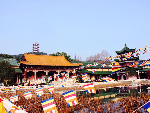 东林寺旅游景点图片