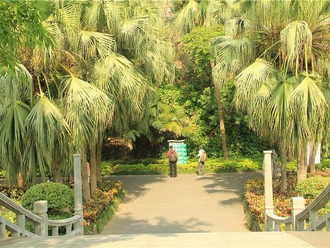 星湖湾公园旅游景点图片