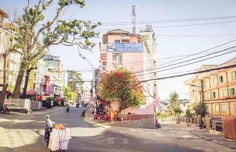 大叻旅游景点图片