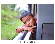【猫游锡兰】印度洋边最美的风景在你眼中