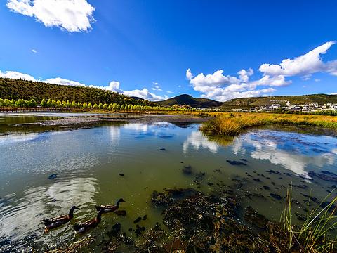 拉姆央措湖旅游景点图片