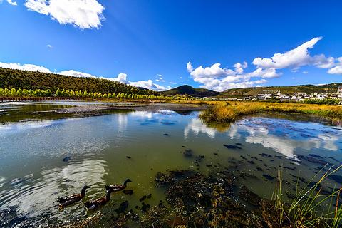 拉姆央措湖的图片