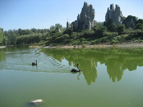 北京野生动物园旅游景点攻略图