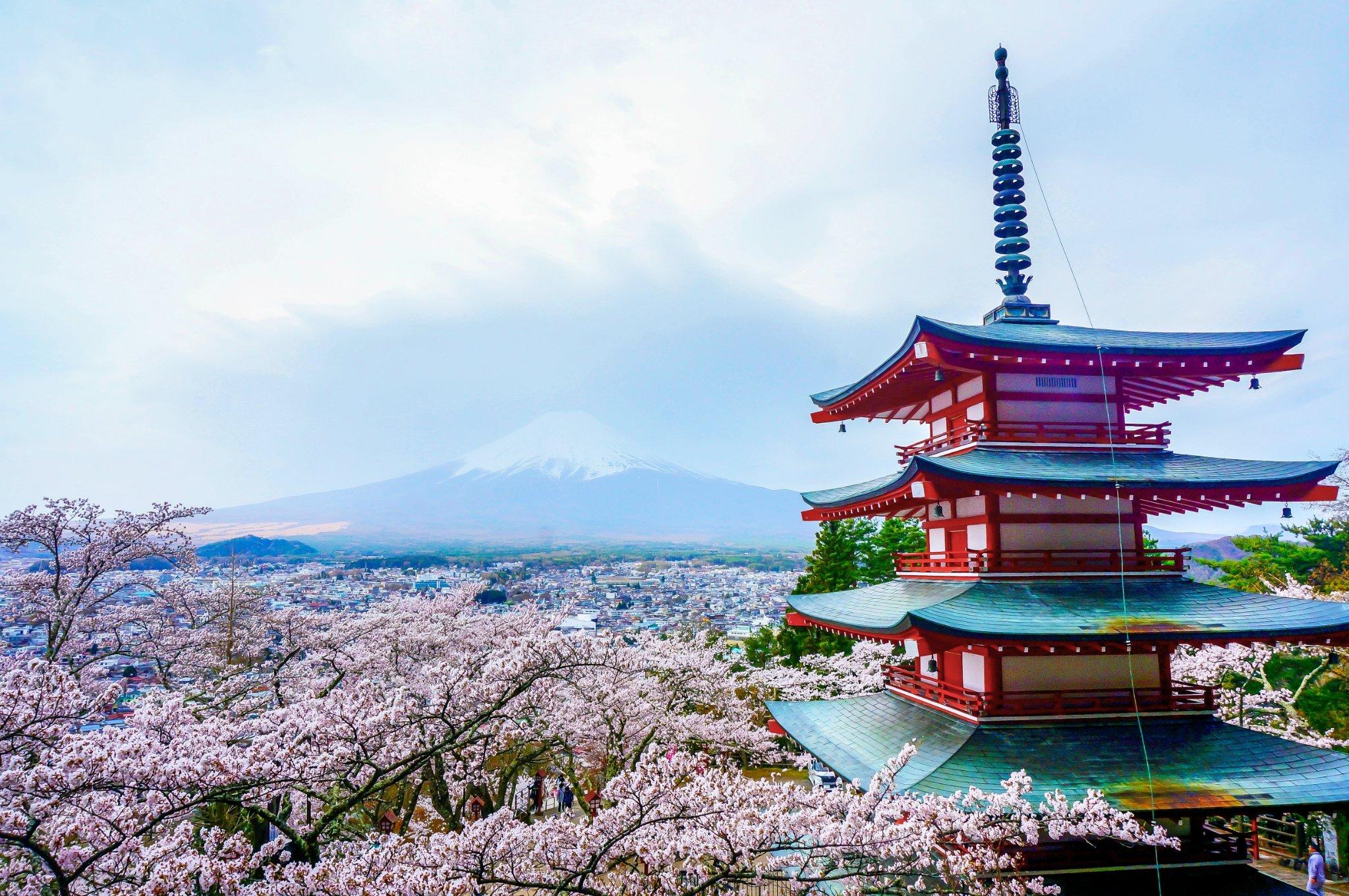 【花见富士】云雾萦峦时,须臾绘百景。(富士山樱之旅)