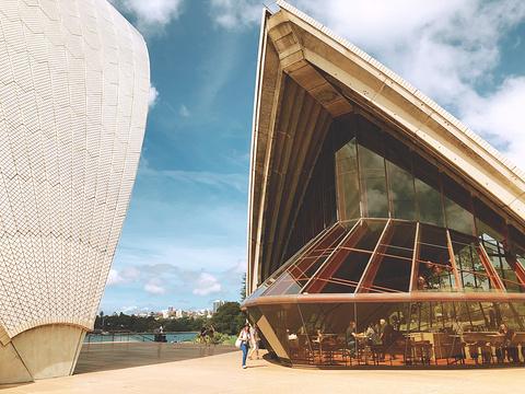 悉尼歌剧院旅游景点图片