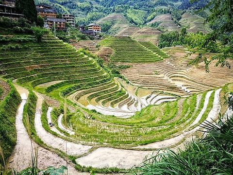 大界千层天梯观景点旅游景点图片