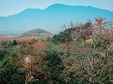 乐东旅游景点攻略图片