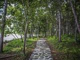 虎林旅游景点攻略图片