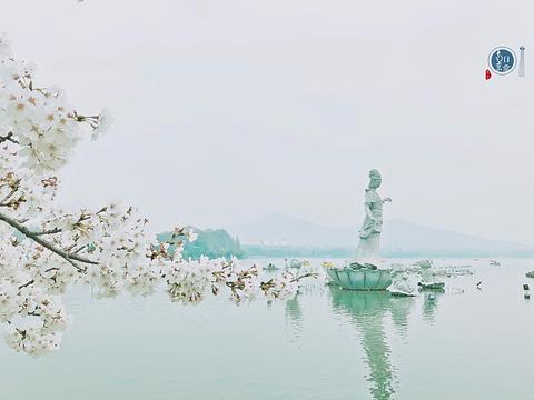 鸡鸣寺旅游景点图片