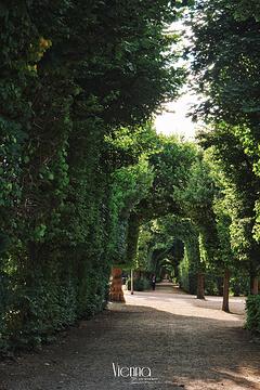 美泉宫花园旅游景点攻略图