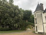 卢瓦尔河谷城堡区