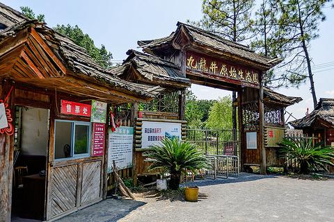 九龙井原始生态园旅游景点攻略图