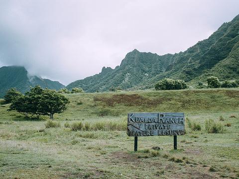古兰尼牧场旅游景点图片