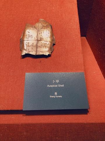 """""""#重庆小众旅游地##三峡博物馆##重庆经典景点#""""所以博物馆一游也绝对是带孩子增长知识的好去处呢_重庆""""的评论图片"""