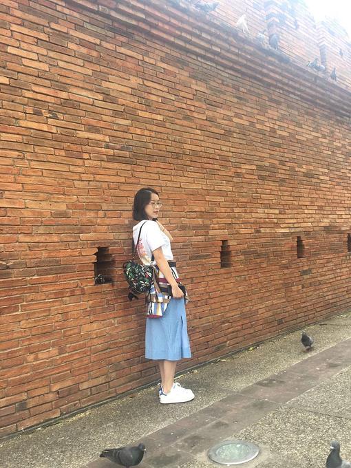 清迈 (古城)图片