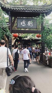 鹤鸣茶社旅游景点攻略图