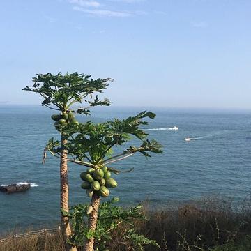 涠洲岛旅游景点攻略图